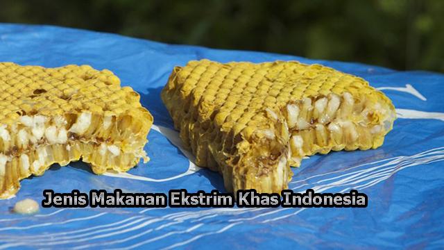 Jenis Makanan Ekstrim Khas Indonesia