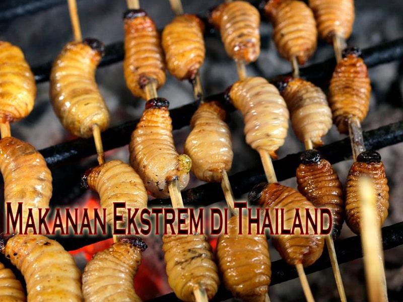Makanan Ekstrem di Thailand